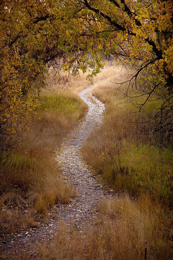 Fall Photograph - Trail Of Dreams by Michael Van Beber