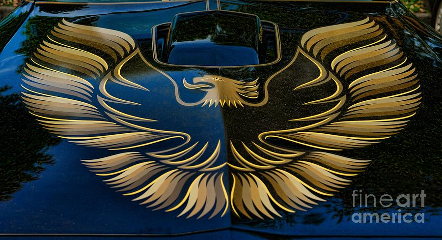 Trans Am Eagle Photograph