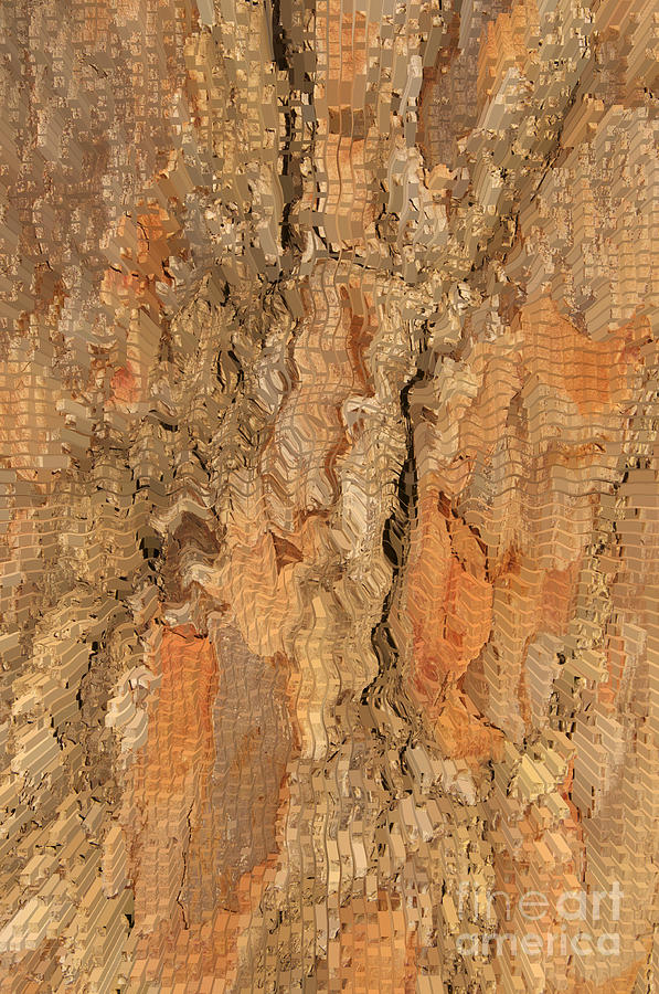 Tree Bark Abstract Photograph - Tree Bark Abstract by Cindy Lee Longhini