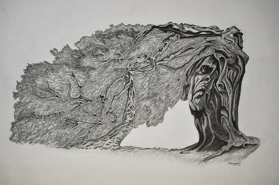 Tree With Faces Drawing