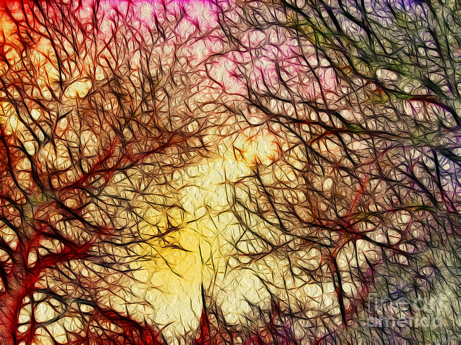 Trees Of The Four Seasons Digital Art