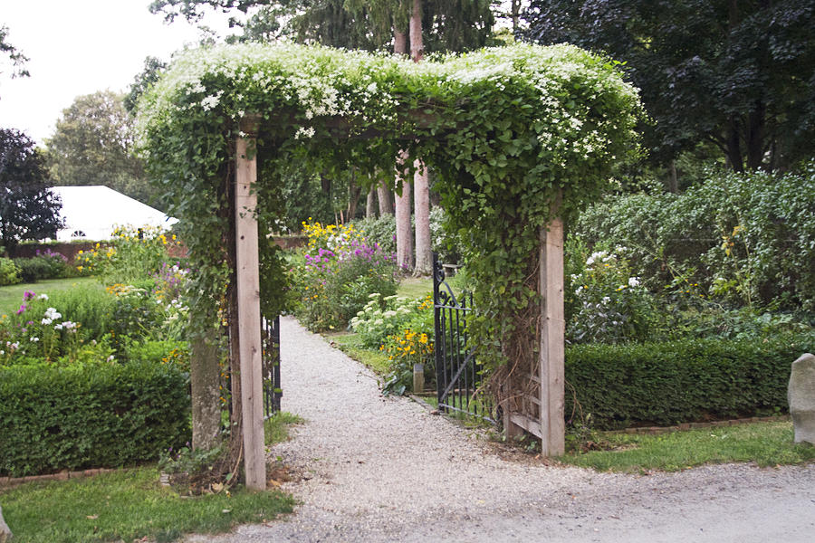 Trellis At Longfellows Wayside Inn Photograph  - Trellis At Longfellows Wayside Inn Fine Art Print