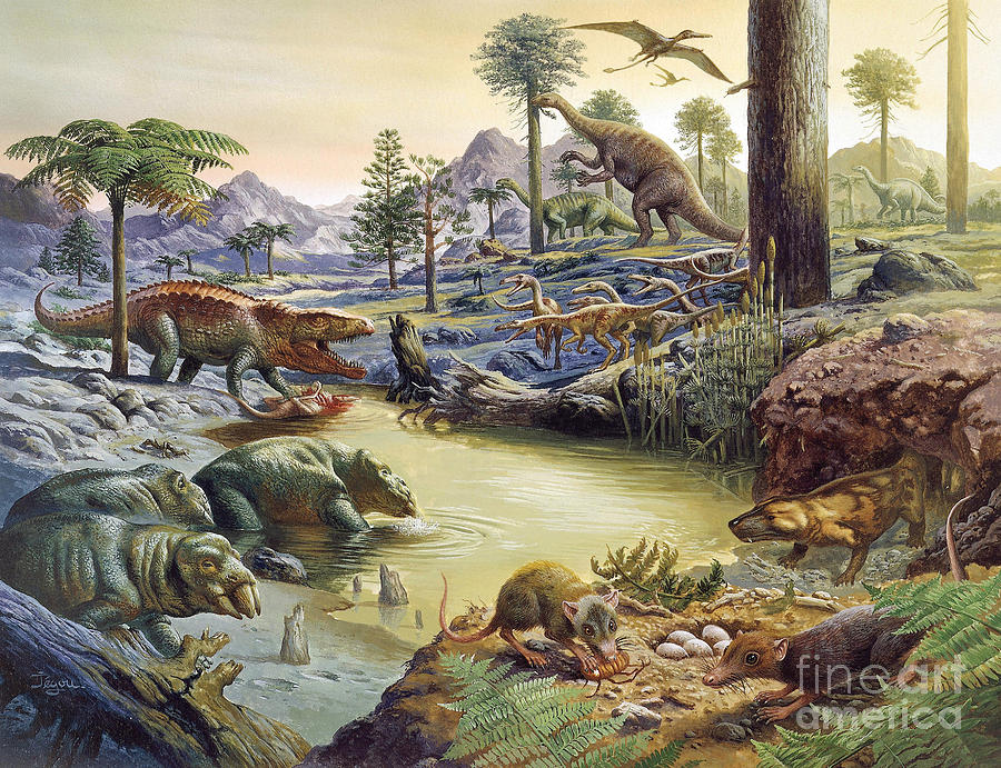 The Mesozoic Era - 1