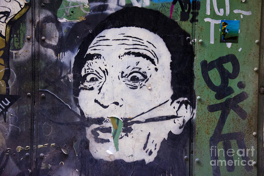Tribute To Salvador Dali Photograph
