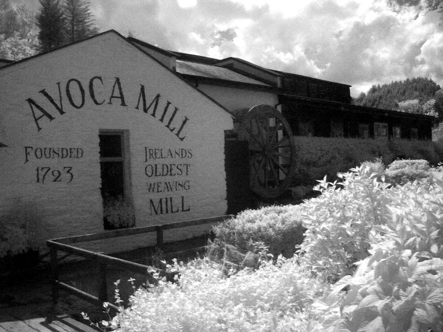 Trip To Avoca Ireland Photograph