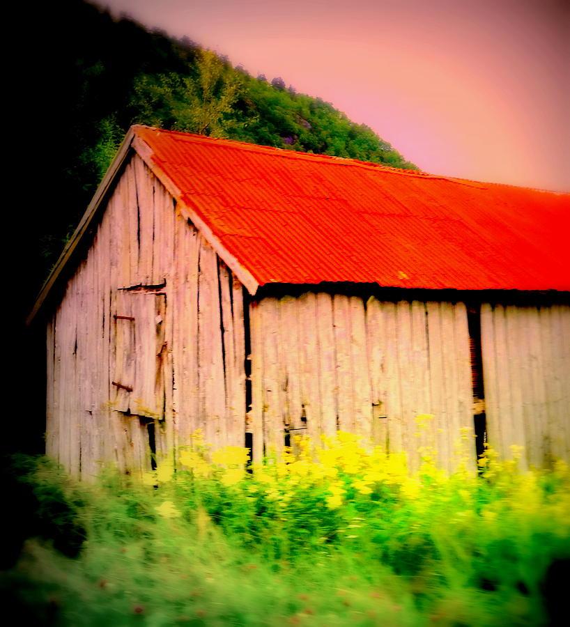 Troll House Photograph  - Troll House Fine Art Print