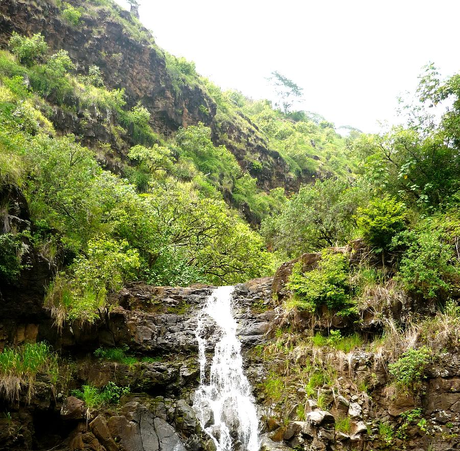 Tropic Waterfall  Photograph