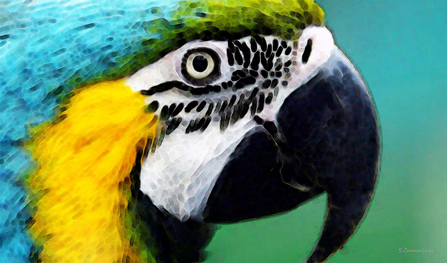 Macaw Painting ...