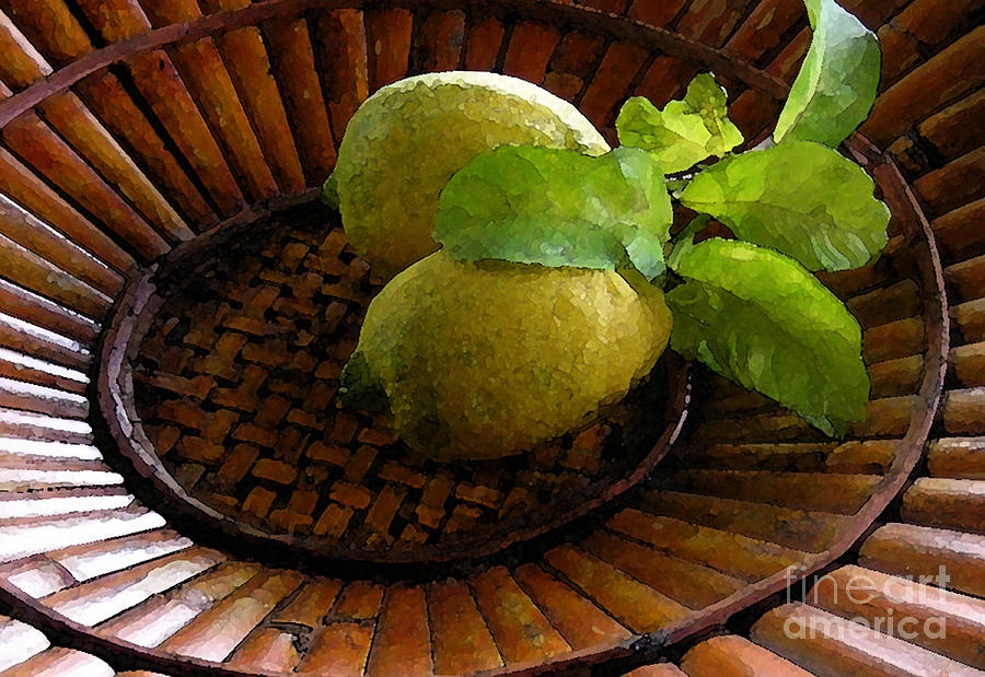 Tropical Lemons Photograph  - Tropical Lemons Fine Art Print