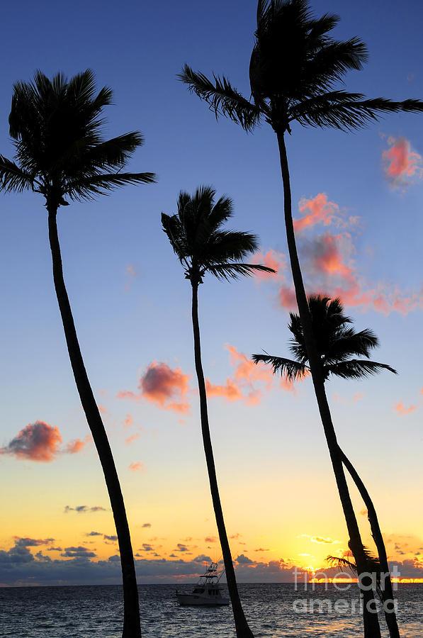 Tropical Sunrise Photograph