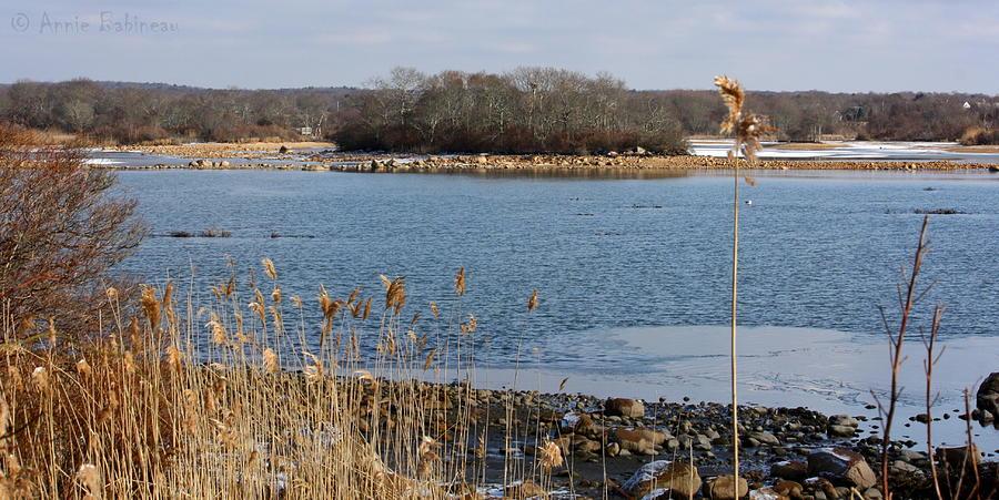Trustom Pond Photograph
