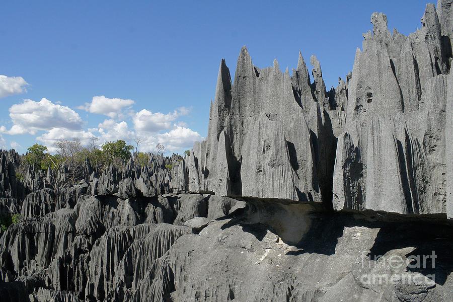 Tsingy De Bemaraha Madagascar 2 Photograph