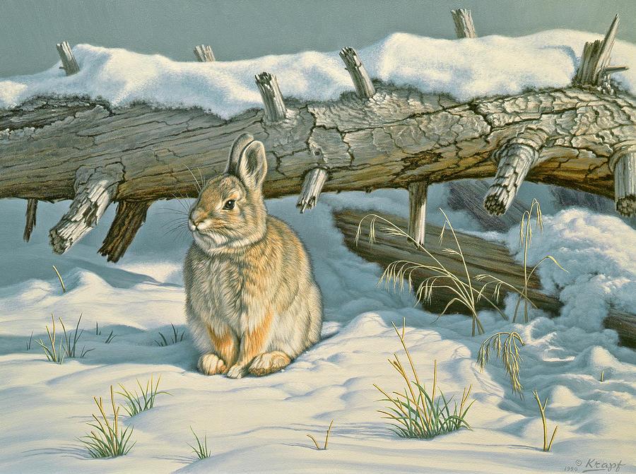 Wildlife Painting - Tucked In by Paul Krapf