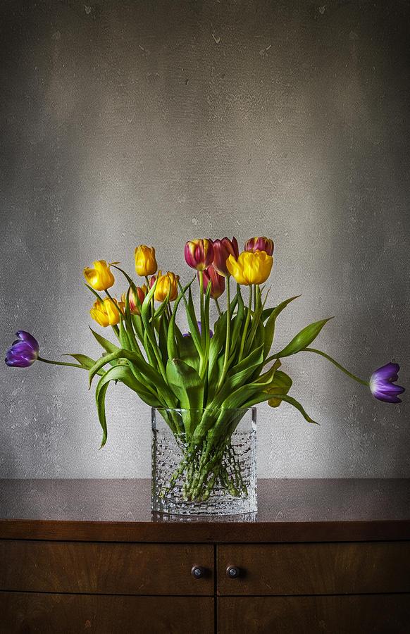 Anniversary Photograph - Tulips by Svetlana Sewell
