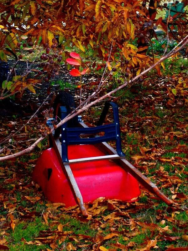 Tumbled Wheelbarrow  Photograph