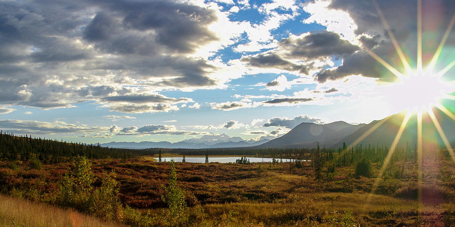 Tundra Burst Photograph