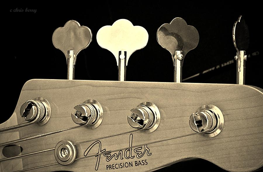 Tuned Bass Photograph  - Tuned Bass Fine Art Print