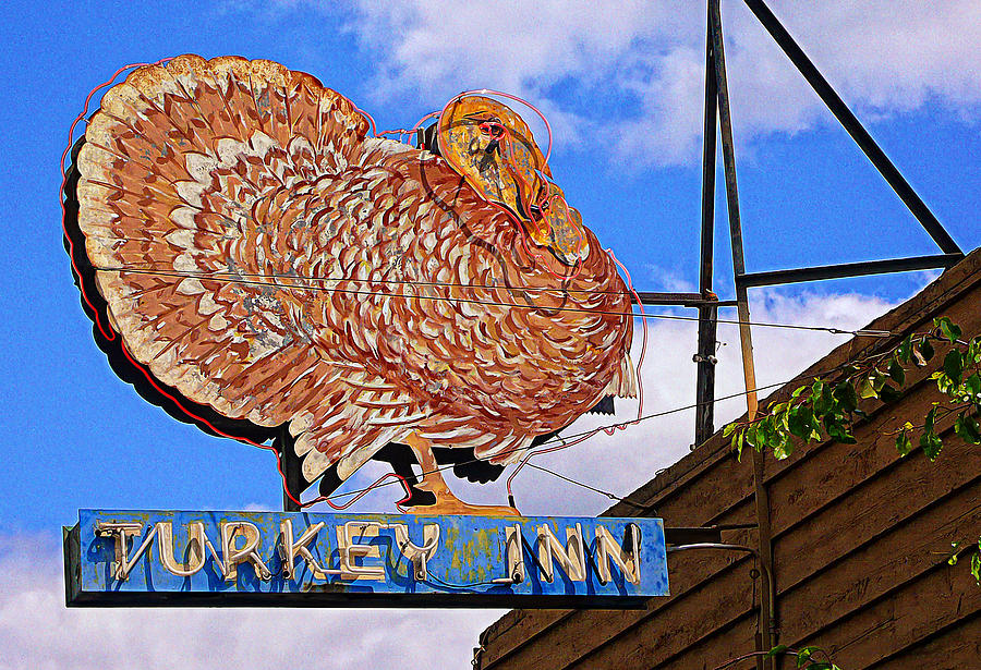 Turkey Photograph - Turkey Inn by Ron Regalado
