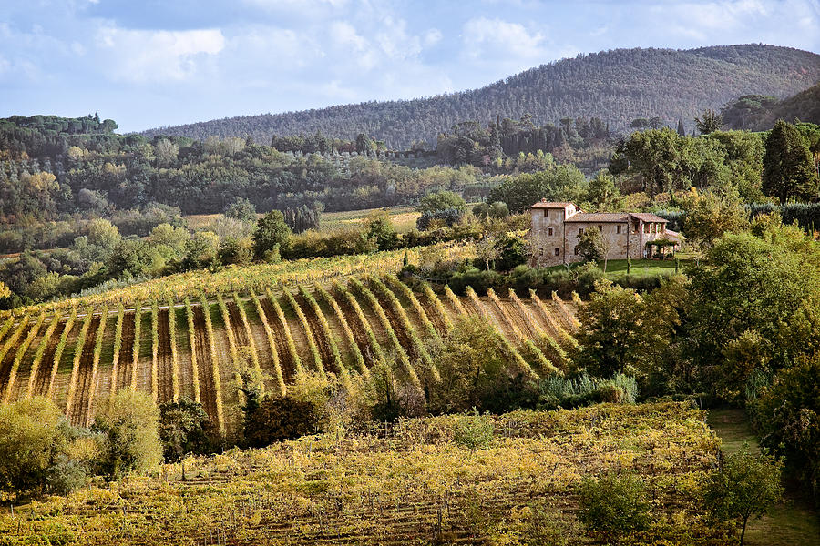 Tuscan Valley Photograph  - Tuscan Valley Fine Art Print
