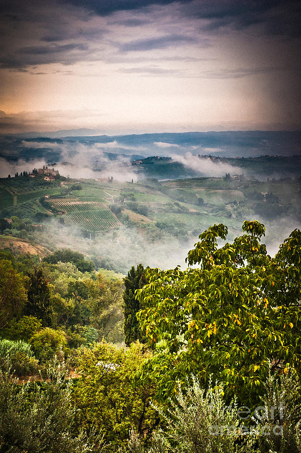 Countryside Photograph - Tuscan View by Silvia Ganora