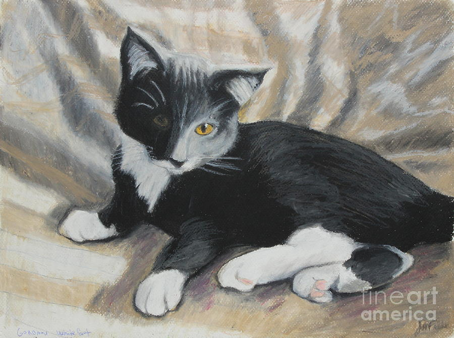 Tuxedo Kitten Painting