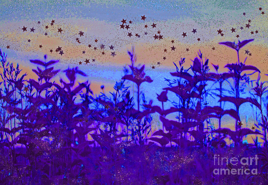 Twilight Meadow Magic Photograph  - Twilight Meadow Magic Fine Art Print