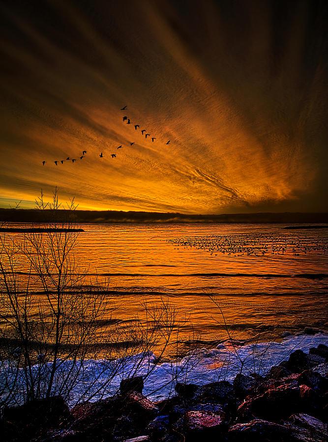 Twilight Sonnet Photograph