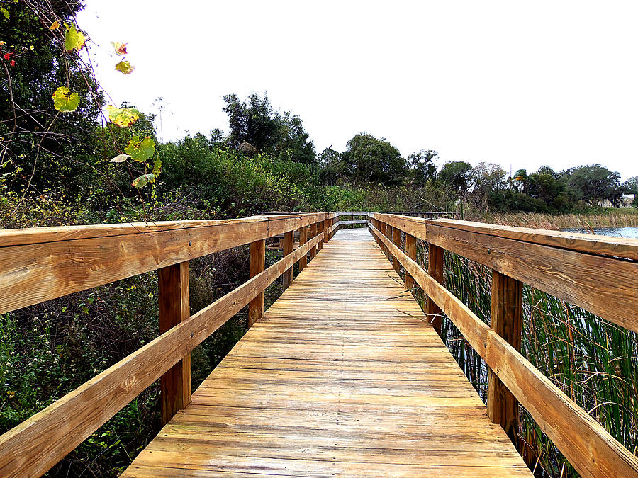 Twin Lakes Boardwalk Photograph  - Twin Lakes Boardwalk Fine Art Print