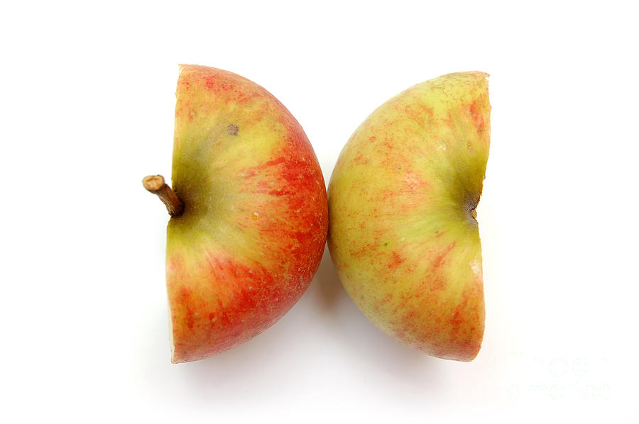 Two Apple Halves Photograph