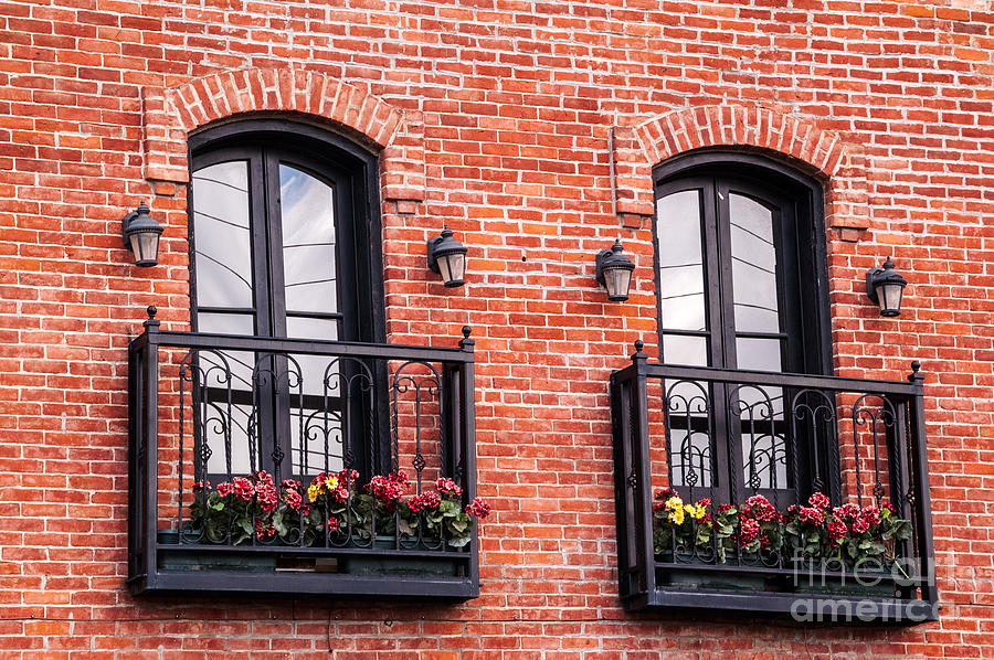 Two Pair Of French Doors Photograph  - Two Pair Of French Doors Fine Art Print