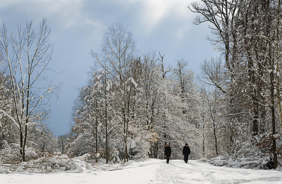 Two People Doing A Walk In Beautiful Forest In Winter Photograph