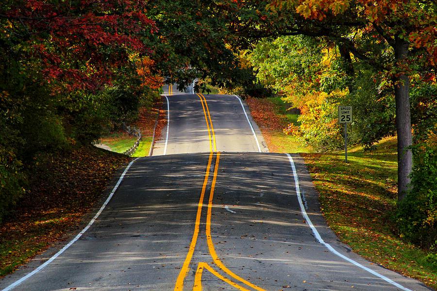 Two Roads Converge Photograph By Rachel Cohen