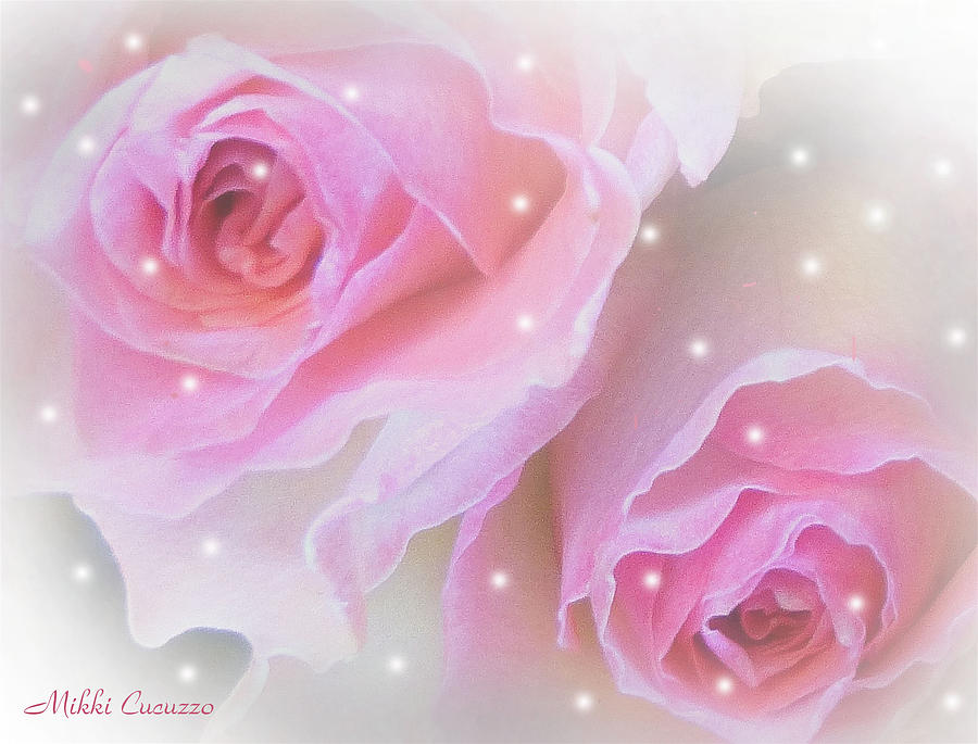 Floral Photograph - Two Roses by Mikki Cucuzzo