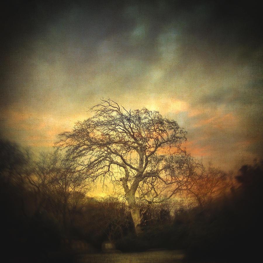 Un Dernier Crepuscule Photograph