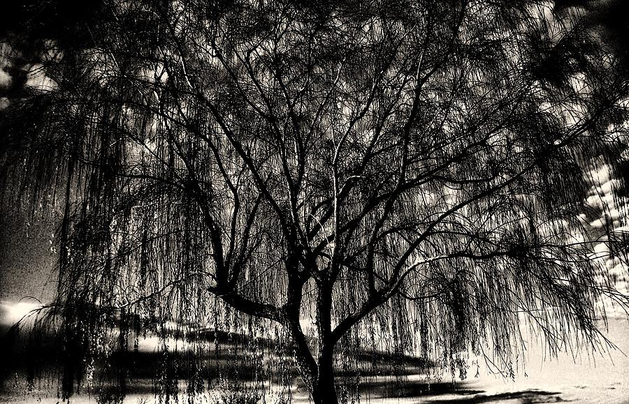 Unconnected Photograph