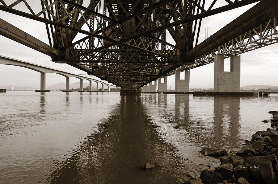 Under Bridges Photograph