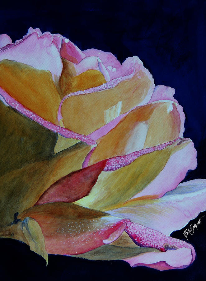 Watercolor Painting - Unfolding Rose by Ruth Bodycott