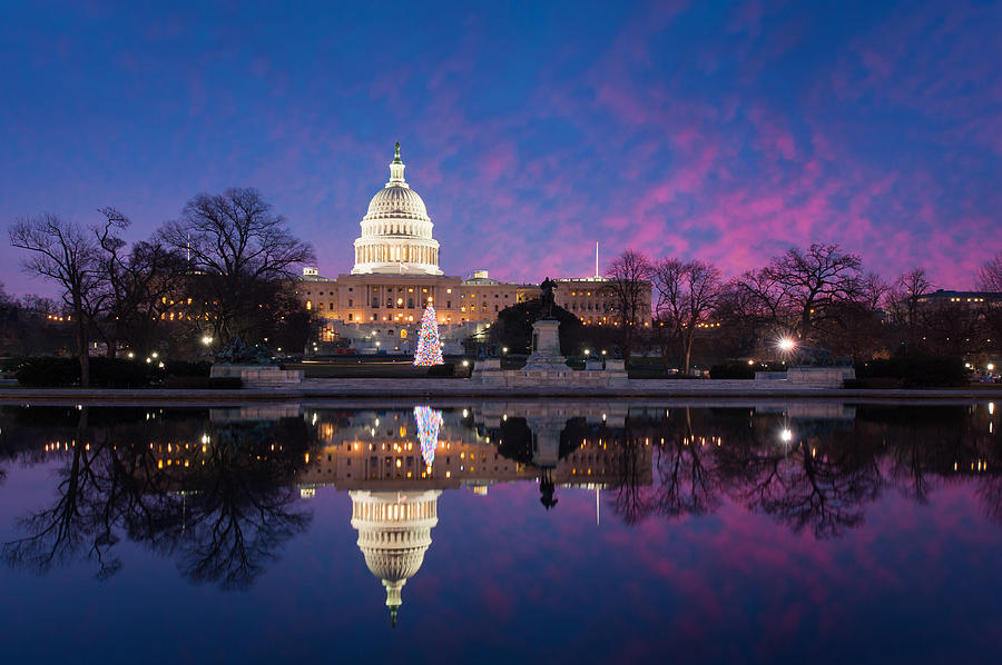 United States Capitol Building Christmas Tree Reflections Photograph
