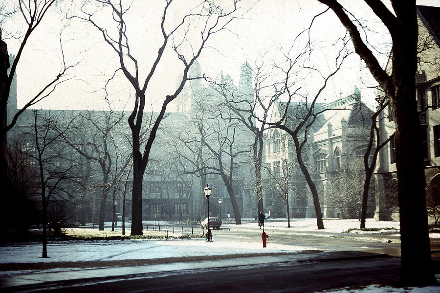 University Of Chicago 1976 Photograph  - University Of Chicago 1976 Fine Art Print