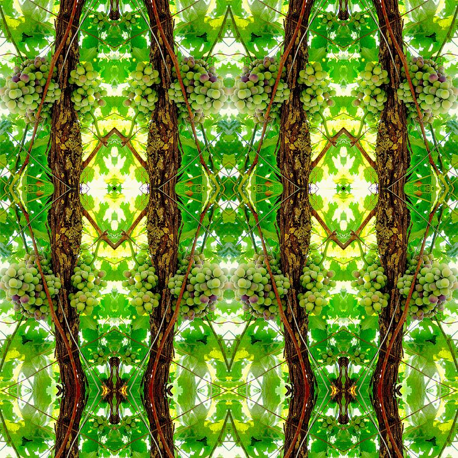 Kaleidoscopic Photograph - Unnatural 74 by Giovanni Cafagna