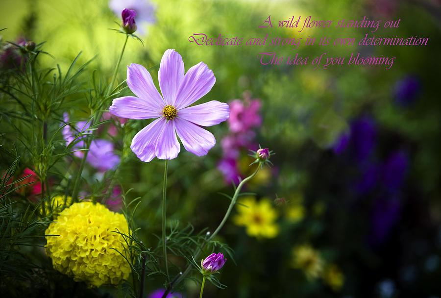 Flowers Photograph - Valentine Haiku by Joanna Madloch