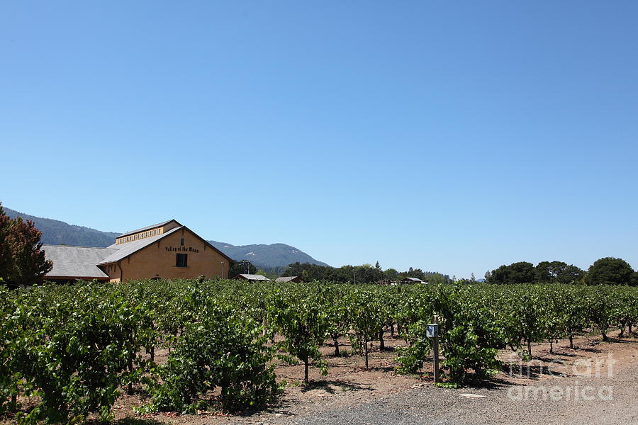 Valley Of The Moon Winery In The Sonoma California Wine Country 5d24486 Photograph