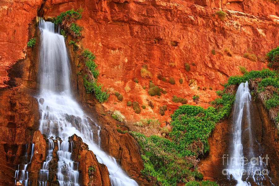 America Photograph - Vaseys Paradise Twin Falls by Inge Johnsson