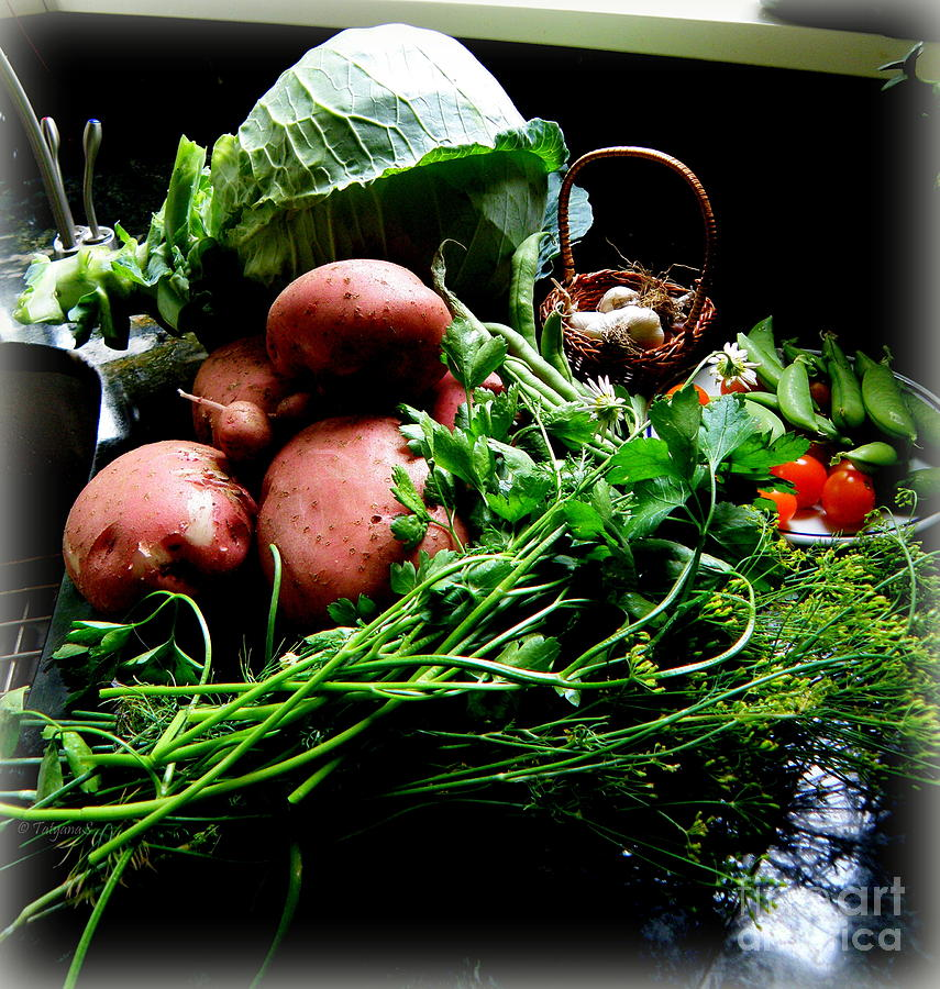 Vegetables. Still Life Photograph  - Vegetables. Still Life Fine Art Print