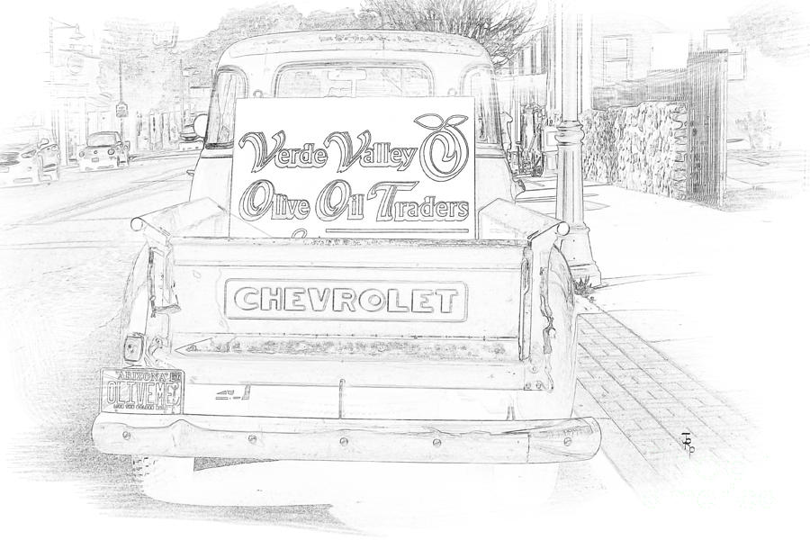 Classic Drawing - Verde Valley Olive Oil Arizona by Janice Rae Pariza