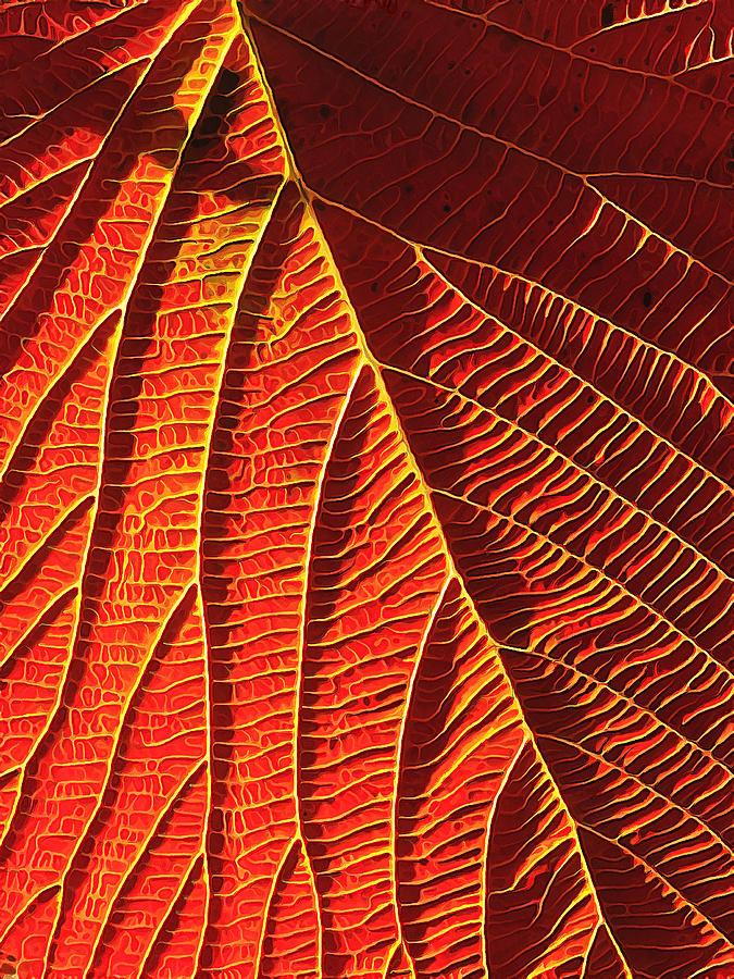 Vibrant Viburnum Digital Art