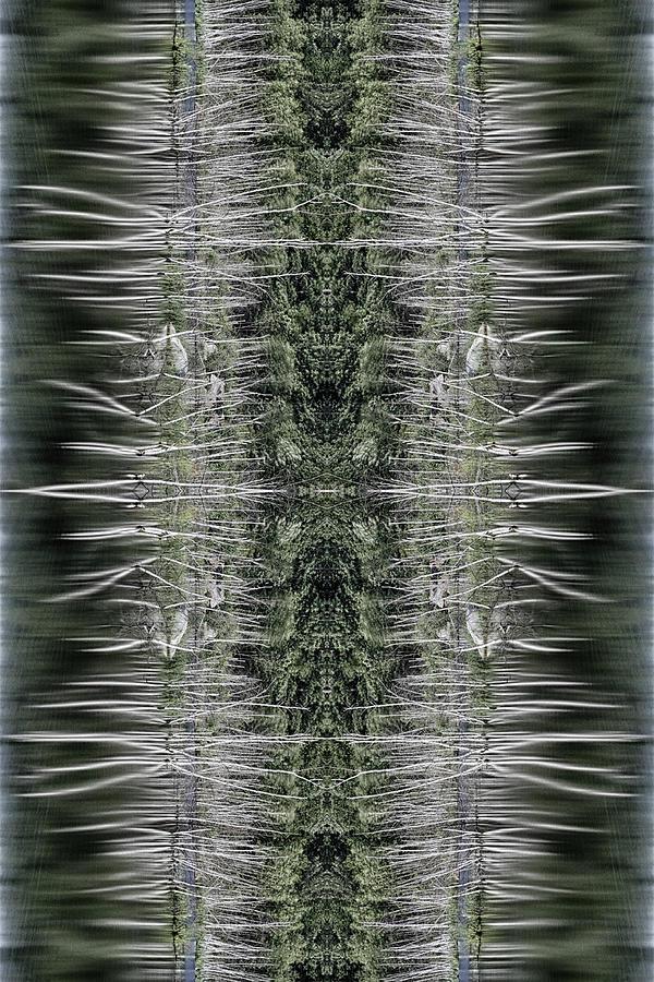 Vibrations Photograph