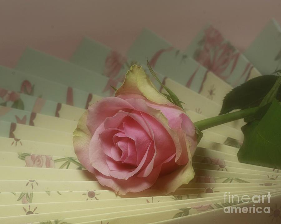 Victorian Rose Photograph