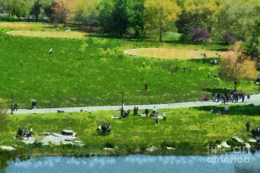 View Of Great Lawn In Central Park Painting