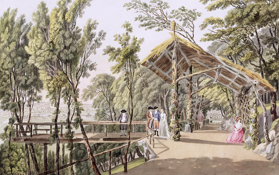 View Of The Reisenberg Gardens Drawing